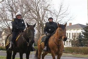 Mounted Unit