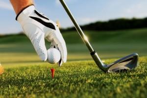 Golf Trip Conversion Van