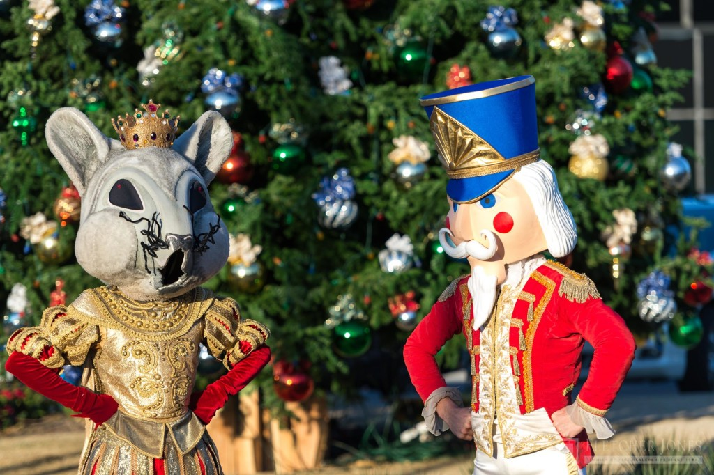 Mouse King and Nutcracker