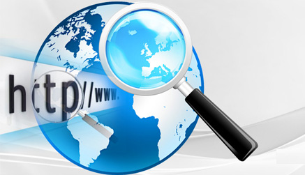 web-internet-research-services-in-udaipur-india