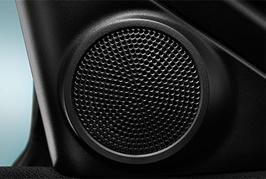 Acura Premium Audio speaker